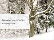 Winter Trees PowerPoint Templates
