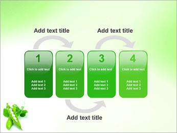 Pois frais Modèles des présentations  PowerPoint - Diapositives 11