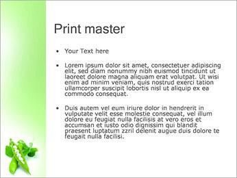 Pois frais Modèles des présentations  PowerPoint - Diapositives 24