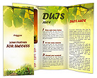 Vineyard Brochure Templates