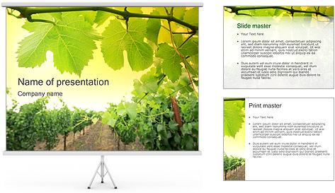 Vignoble Modèles des présentations  PowerPoint