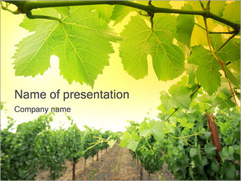 Vineyard PowerPoint presentationsmallar