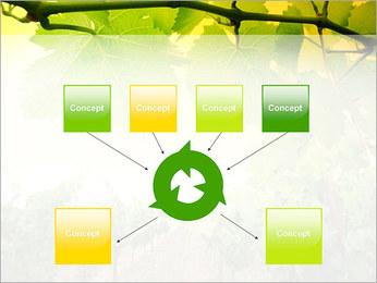 Vignoble Modèles des présentations  PowerPoint - Diapositives 10