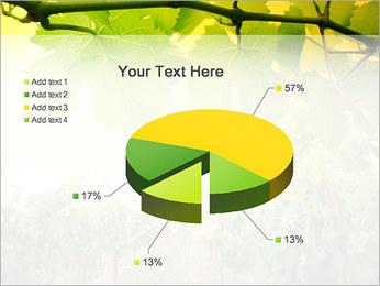 Vignoble Modèles des présentations  PowerPoint - Diapositives 19