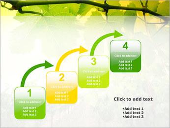 Vignoble Modèles des présentations  PowerPoint - Diapositives 20