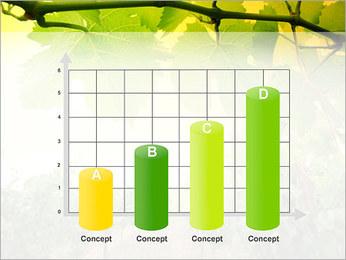 Vignoble Modèles des présentations  PowerPoint - Diapositives 21