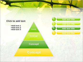 Vignoble Modèles des présentations  PowerPoint - Diapositives 22