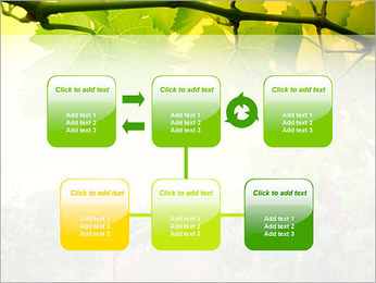 Vignoble Modèles des présentations  PowerPoint - Diapositives 23