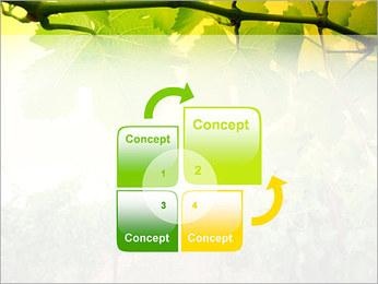 Vignoble Modèles des présentations  PowerPoint - Diapositives 5