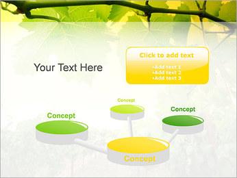 Vignoble Modèles des présentations  PowerPoint - Diapositives 9
