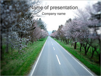 Spring Road PowerPoint Template