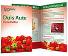 Strawberry Brochure Template