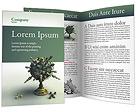 Chess Globe Brochure Templates
