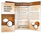 Coconuts Brochure Templates