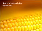 Kukuřice PowerPoint šablony