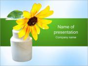 Daisy in Vase PowerPoint Templates