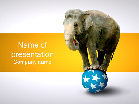 Elephant On Ball Powerpoint Template Backgrounds Id 0000001666