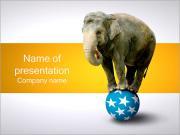 Elephant on Ball PowerPoint Templates