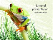 Зеленая лягушка Шаблоны презентаций PowerPoint