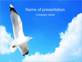 Seagull in Sky PowerPoint Template