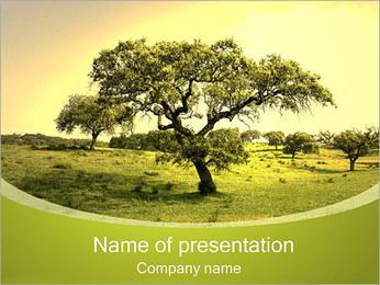 Oude Boom Sjablonen PowerPoint presentatie