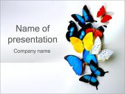 Kelebekler PowerPoint sunum şablonları