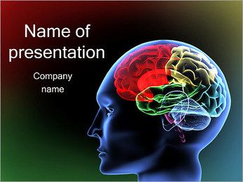 Brain Model PowerPoint Template
