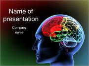 Brain Model PowerPoint Templates