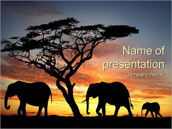 Silhouettes of Elephants PowerPoint Template