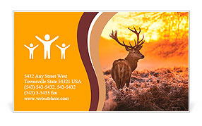 Red Deer in Morning Sun. Business Card Template