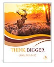 Red Deer in Morning Sun. Poster Template