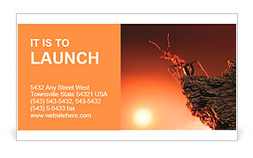 Ant on top of rock, mountain peak, height concept Business Card Template