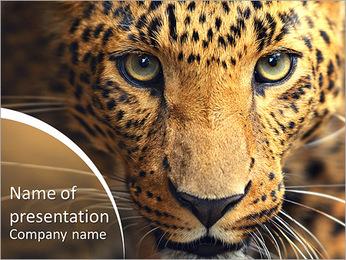 Leopard portrait PowerPoint Template