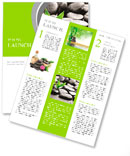 Zen basalt stones and bamboo with dew Newsletter Template