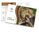 Anger Leopard Postcard Templates
