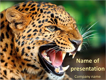 Anger Leopard PowerPoint Template