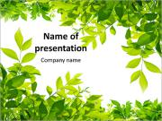 Frame of green leaves PowerPoint Templates