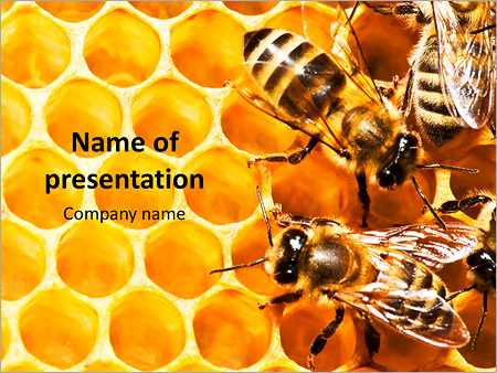 Honeycomb And Bees Powerpoint Template Backgrounds Google Slides