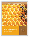 Honeycomb and bees Word Template