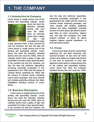0000101173 Word Template - Page 3