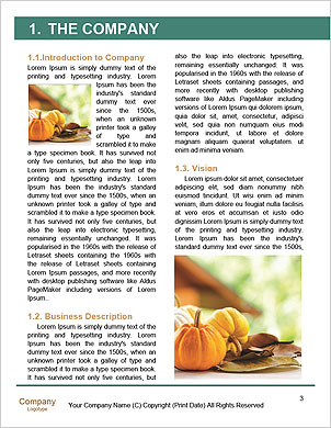 0000101187 Word Template - Page 3