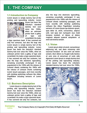0000101190 Word Template - Page 3