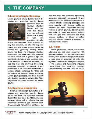 0000101196 Word Template - Page 3