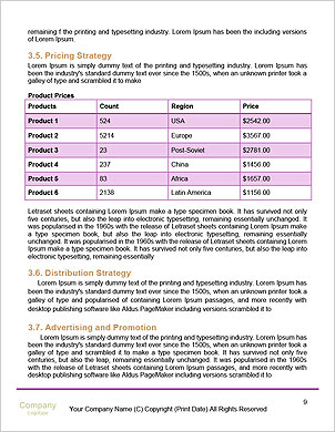 0000101217 Word Template - Page 9