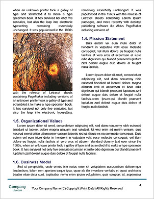 0000101218 Word Template - Page 4