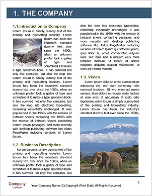 0000101219 Word Template - Page 3
