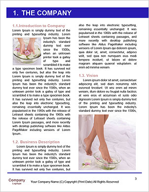 0000101229 Word Template - Page 3