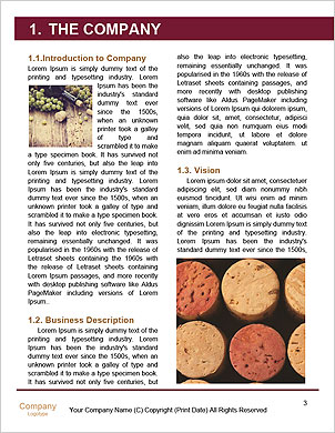 0000101233 Word Template - Page 3