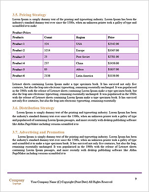 0000101243 Word Template - Page 9