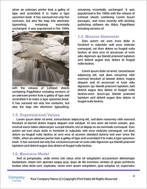0000101245 Word Template - Page 4